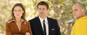 Bones – The Salt and the Wounds (4.17)