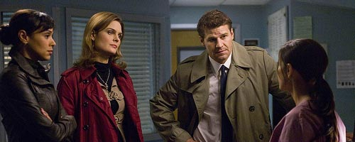 Bones – The Doctor in the Den (4.18)