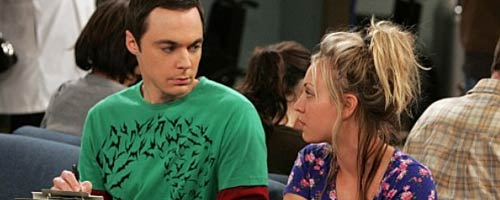 The Big Bang Theory - The Adhesive Duck Deficiency (3.08)