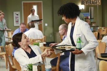 Grey's Anatomy – Puzzle With a Piece Missing (11.02)