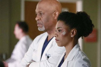 Grey's Anatomy : cheval ou zèbre (11.16)