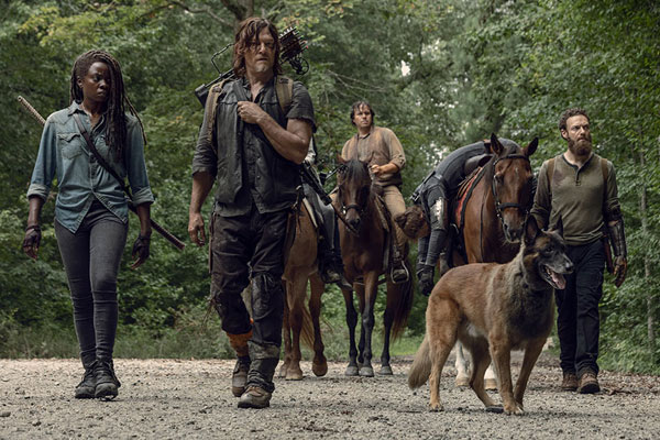 the walking dead saison 9 episode 9 - The Walking Dead : Adaptation (9.09)